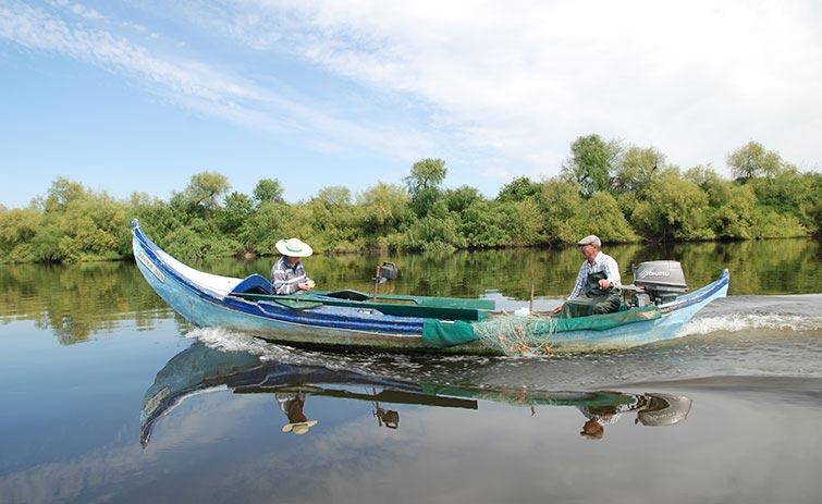 A pesca e as artes